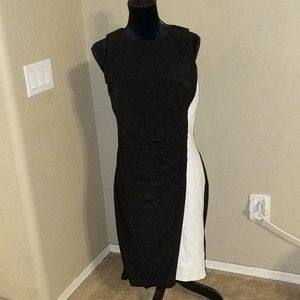 Lauren Ralph Lauren Black/Cream Dress